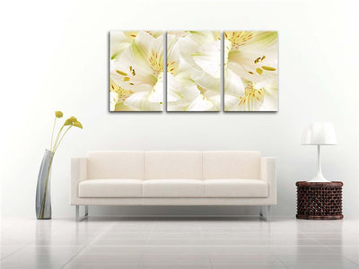 Beautiful White Flower - 3 Piece Painting