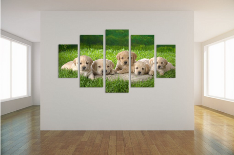 HD PRINTED LIMITED EDITION PUPPIES CANVAS