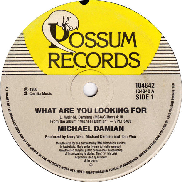 What Are You Looking For – Michael Damian (LP, Vinyl Record Album)