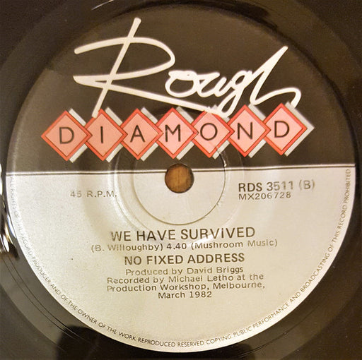 We Have Survived / From My Eyes – No Fixed Address (LP, Vinyl Record Album)