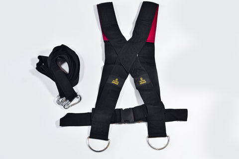 Harness Alpha Armor®