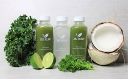 "Coco Cleanse - 1 Day ""The Beginner"""