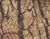 Wild in the Wilderness tree bark Riverwoods fabric