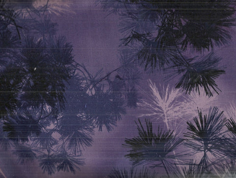 Enchanted Pines purple branches Kaufman fabric
