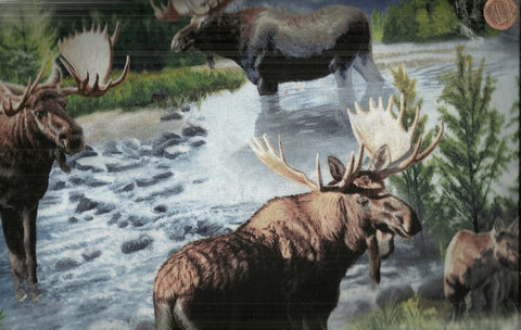 Wild Wings Lake Massepequa moose wildlife fabric