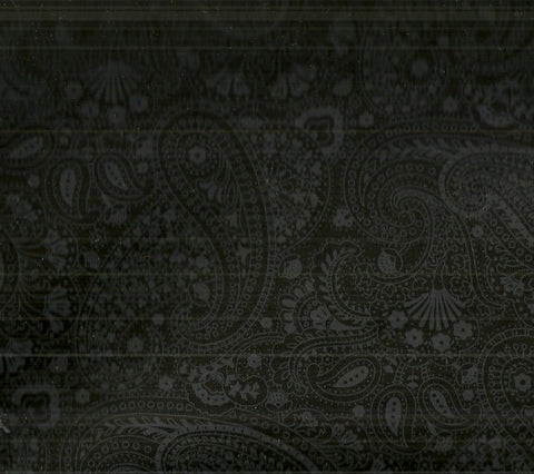 Paisley black Timeless Treasures fabric