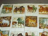 Unbridled horses blocks panel Quilting Treasures fabric