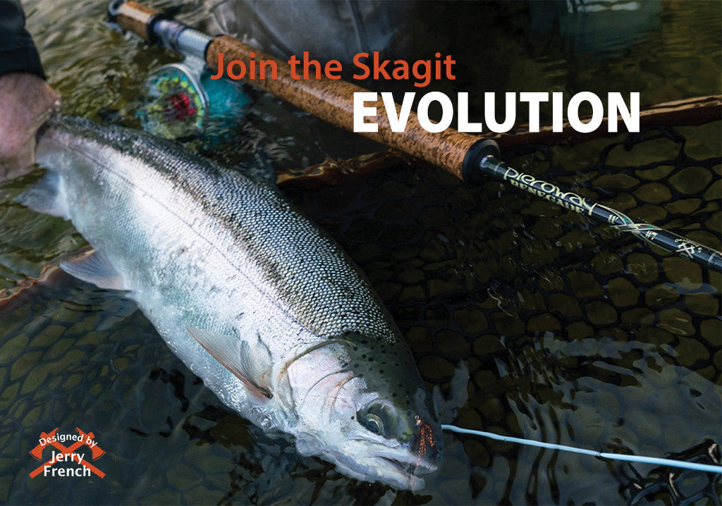 The Evolution of the Skagit System... Let's start with the Renegade Series