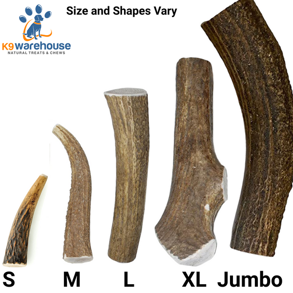 [NEW] K9warehouse Elk Antlers For Dogs - Premium Grade, Naturally Shed Whole & Split Elk Antlers