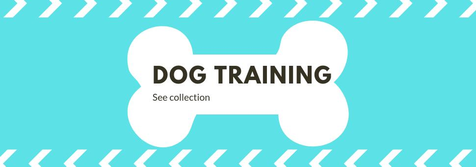 dog training collars and bark collars