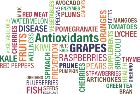 An image of the written names of foods rich in antioxidants, written in different colours, sizes, directions and fonts.