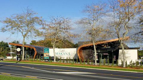 A landscape view of the Makana Chocolate Factory and Cafe in Kerikeri