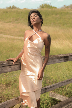 Gara Midi champagne Dress