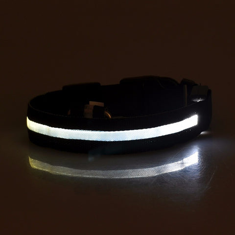 LED Light Up Nylon Collar