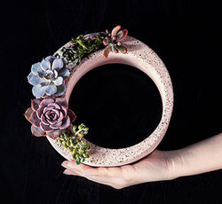 Concrete Ring Planter