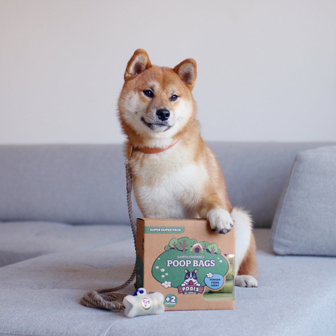Dog with paw on Pogi's Poop Bags
