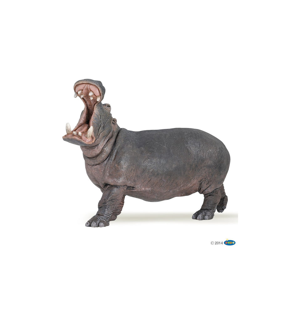 Load image into Gallery viewer, Papo - Hippopotamus
