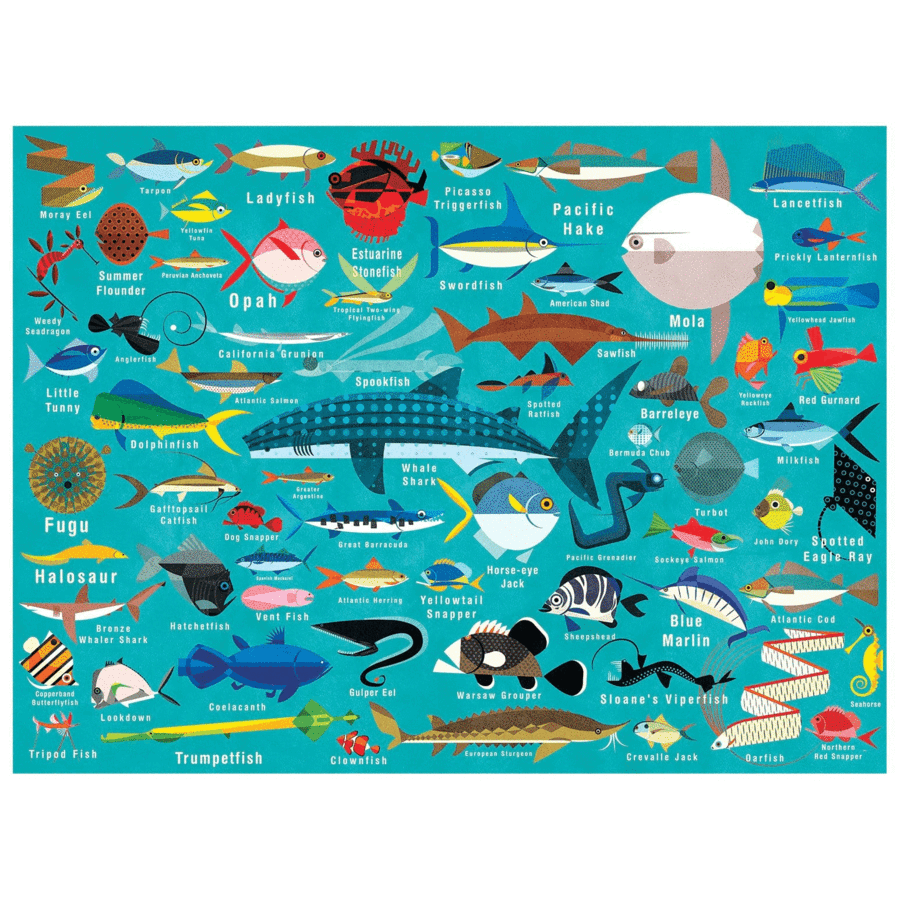 Load image into Gallery viewer, Mudpuppy - 1000 Piece Jigsaw; Ocean Life