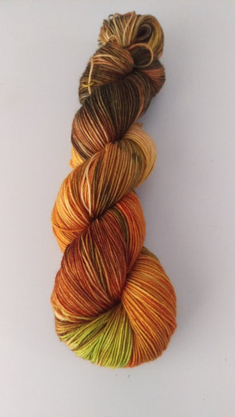 Superwash Merino Nylon, 4 ply sock yarn, 100g  - Squash Medley