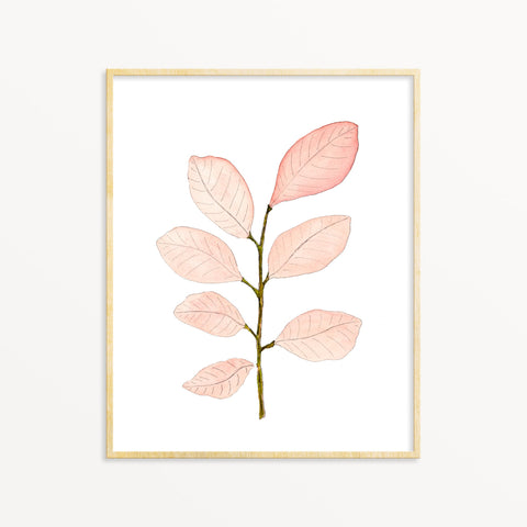 Watercolor Art Print - Stem No.3