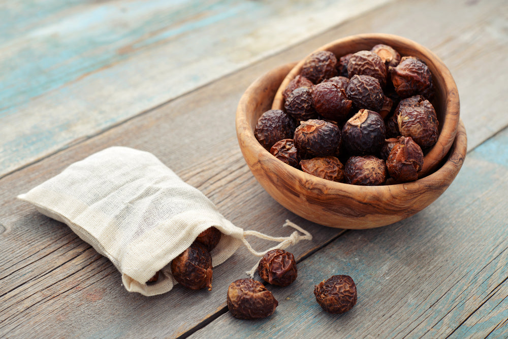 Organic Soap Nuts (Soap Berries) Natural Organic Laundry Detergent and Softener!
