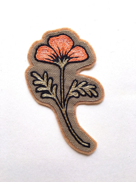 Desert Poppy Patch