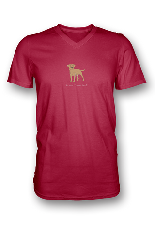 Mens V Neck T-Shirt - Boarder Terriers Rule! Red