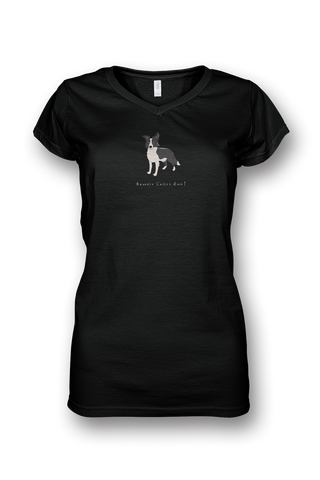 Ladies Sheer V Neck T-Shirt - Boarder Collies Rule! Black