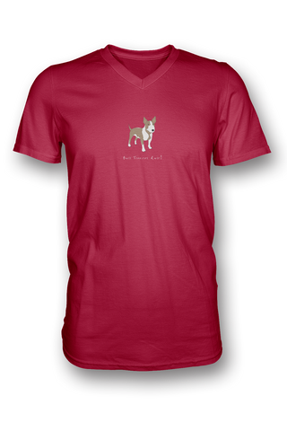 Mens V Neck T-Shirt - Bull Terriers Rule! - Dogs Rule!