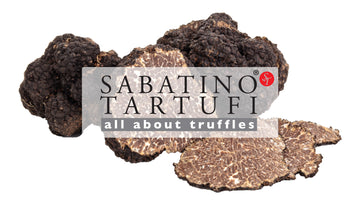 Truffle Quick Facts And Q&A
