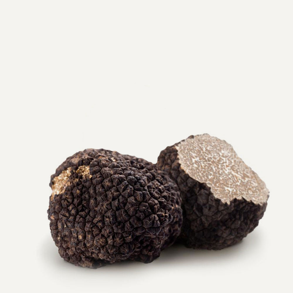 Fresh Black Summer Truffles 2 oz