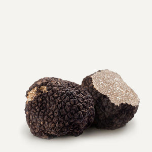 Fresh Black Summer Truffles 2 oz - Sabatino Truffles