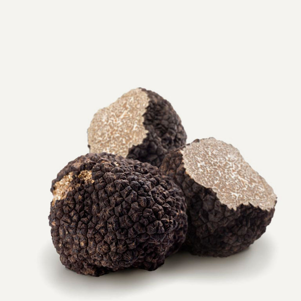 Fresh Black Summer Truffles 4 oz