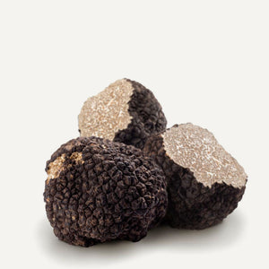 Fresh Black Summer Truffles 4 oz - Sabatino Truffles