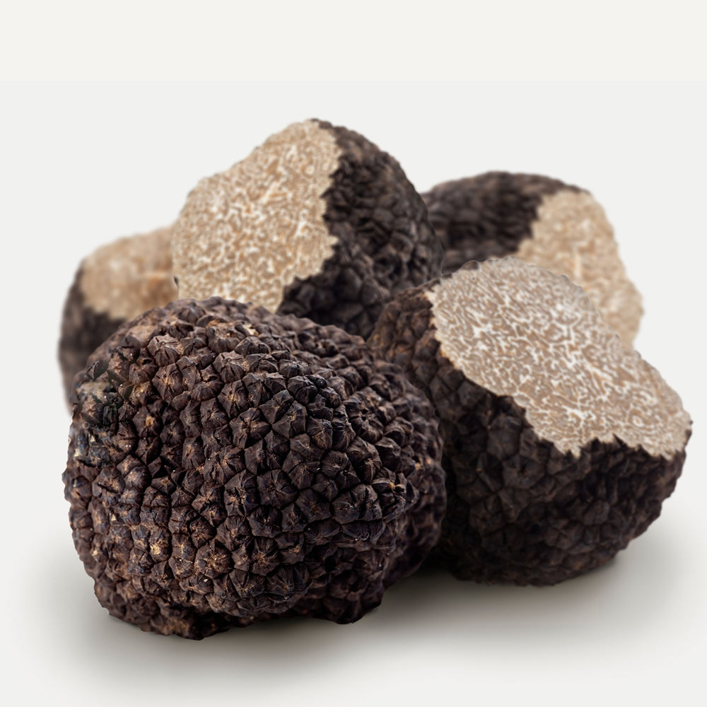 Fresh Black Summer Truffles 8 oz
