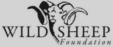 member of wild sheep foundation