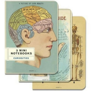 Mini Notebooks Cavallini Curiosities