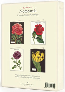 Botanicals Greeting Cards!