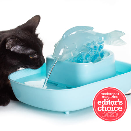 NEW! The Drinking Buddy Cat Water Fountain - Fish/Blue Basin