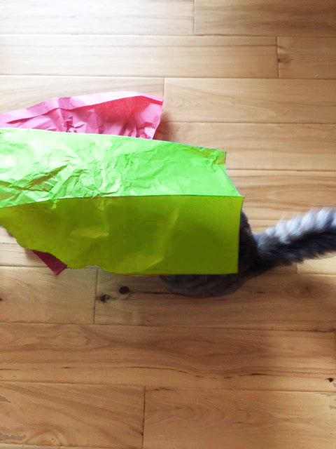 Organic Catnip & Silvervine Infused Paper Sheets (RoyalBlue/LimeGreen)