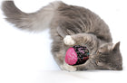 #Klinkball Catnip Toy - Cylinder Ball