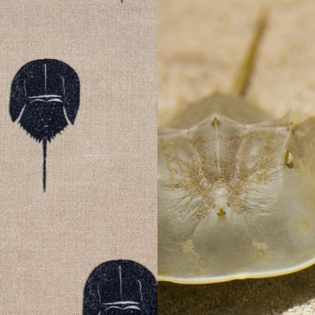 horseshoe crab fabric