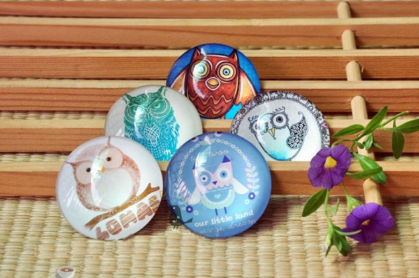 5 Piece Owl Round Glass Fridge Magnets