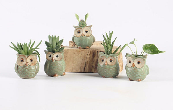 5pc Set Ceramic Owl Mini Flower Pots