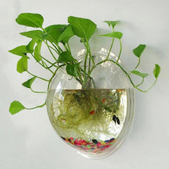 Aquarium Wall Plant Holder