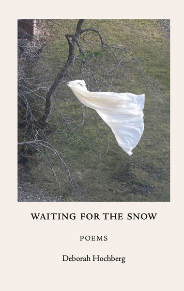 Waiting for the Snow - Deborah Hochberg