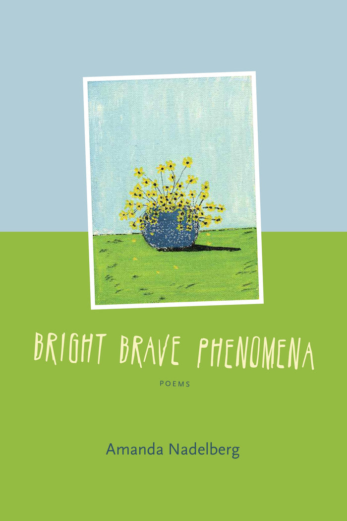 Bright Brave Phenomena