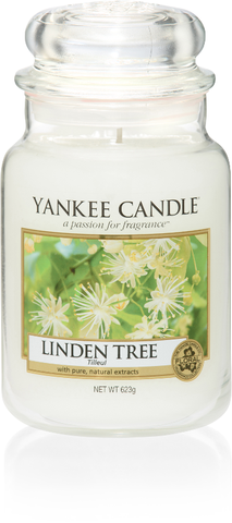 Linden Tree Large Jar - Candle Co Winchester