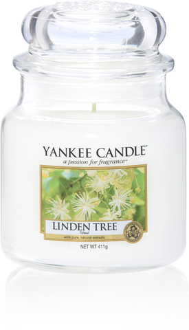 Linden Tree Medium Jar - Candle Co Winchester