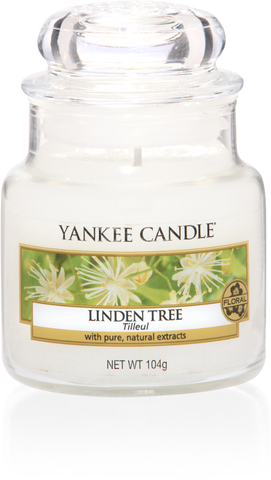 Linden Tree Small Jar - Candle Co Winchester